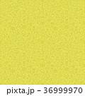 くだもの フルーツ 実のイラスト 36999970