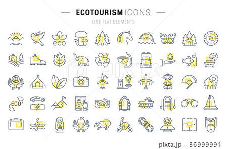 Set Vector Flat Line Icons Ecotourism 36999994