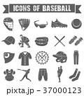 ベースボール 白球 野球のイラスト 37000123