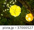 新年 新春 新しい年の写真 37000527