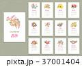 カレンダー 暦 デザインのイラスト 37001404