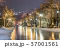 函館 八幡坂 イルミネーションの写真 37001561