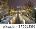 函館 八幡坂 イルミネーションの写真 37001564