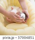 沐浴 37004851