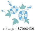 アサガオ(水色) 37008439