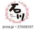 石川 筆文字 桜 フレーム 37008597