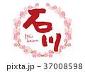 石川 筆文字 桜 フレーム 37008598