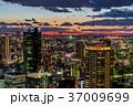 大阪府 都市風景 街並みの写真 37009699