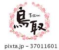鳥取 筆文字 桜 フレーム 37011601