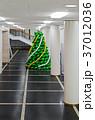 バルーン 風船 クリスマスの写真 37012036