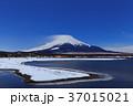 山中湖_月夜の富士山 37015021