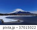 山中湖_月夜の富士山 37015022