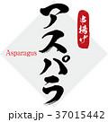 アスパラ・串揚げ(筆文字・手書き) 37015442