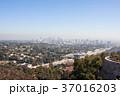 ゲッティ美術館から見下ろすロサンゼルス:Getty Center 37016203