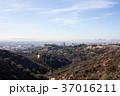 グリフィス天文台からみたロサンゼルスの街並み: Griffith Observatory 37016211