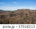 グリフィス天文台からみたHollywoodのサイン: Griffith Observatory 37016213