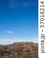 グリフィス天文台からみたHollywoodのサイン: Griffith Observatory 37016214