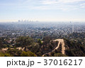 グリフィス天文台からみたロサンゼルスの街並み: Griffith Observatory 37016217