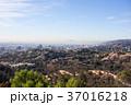 グリフィス天文台からみたロサンゼルスの街並み: Griffith Observatory 37016218