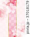 桜 春 花のイラスト 37018179