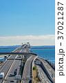 【千葉県】海ほたるパーキングエリア 37021287