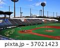 大井ふ頭中央海浜公園の大田スタジアム 37021423