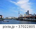 総武線隅田川橋梁と東京スカイツリー 37022805