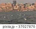 インドの世界遺産 ワラーナシーのガンジス川 小舟から見た街並みと野鳥の群れ 37027870
