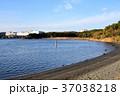 大井ふ頭海浜中央公園なぎさの森の干潟保全地区 37038218