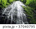 5月 緑の龍双ヶ滝 -日本の滝百選- 37040795