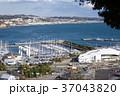 湘南港俯瞰-ヨットハーバー 37043820