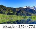 長野_新緑の上高地大正池 37044778