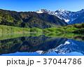 長野_新緑の上高地大正池 37044786