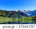 長野_新緑の上高地大正池 37044787