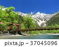 上高地_新緑の河童橋 37045096
