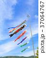 大空に泳ぐ鯉のぼり 37064767