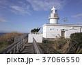 城ヶ島灯台 神奈川県 三浦市 37066550
