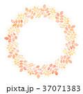 葉 リース フレームのイラスト 37071383