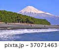 富士山 海 海岸の写真 37071463