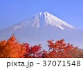富士山 世界遺産 山の写真 37071548