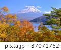 富士山 世界遺産 本栖湖の写真 37071762