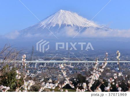 岩本山からの早春の風景-6914 37071969