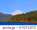 富士山 山 芦ノ湖の写真 37071975
