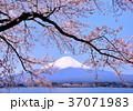 風景 富士山 山の写真 37071983