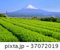 風景 富士山 山の写真 37072019