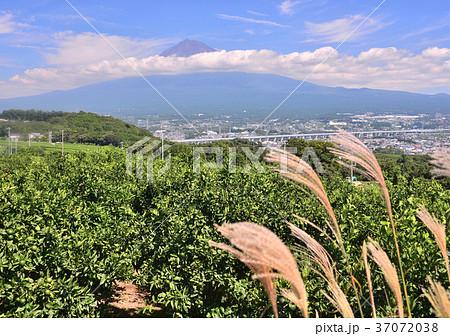岩本山からの初秋の風景-6833 37072038
