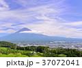 風景 富士山 山の写真 37072041
