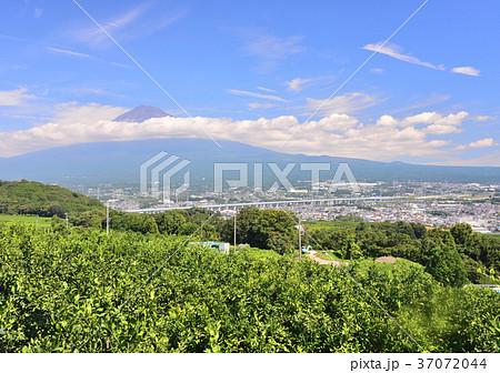 岩本山からの初秋の風景-6839 37072044