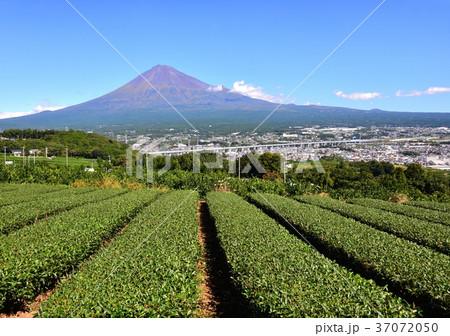 初秋の富士山-6845 37072050
