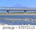 富士山 新幹線 乗り物の写真 37072115